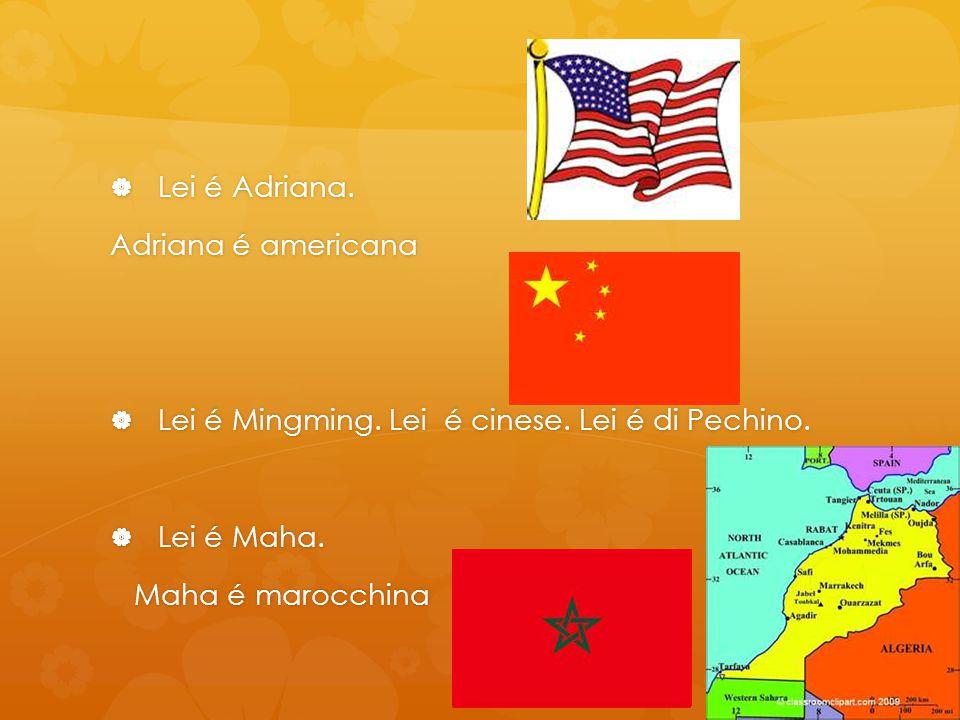 Lei é Adriana. Lei é Adriana. Adriana é americana Lei é Mingming. Lei é cinese. Lei é di Pechino. Lei é Mingming. Lei é cinese. Lei é di Pechino. Lei