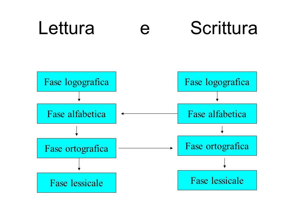 Lettura e Scrittura Fase logografica Fase alfabetica Fase ortografica Fase lessicale