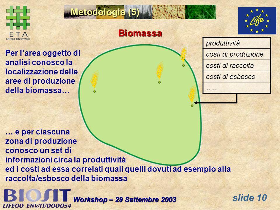 slide 10 Workshop – 29 Settembre 2003 Biomassa Per larea oggetto di analisi conosco la localizzazione delle aree di produzione della biomassa… … e per