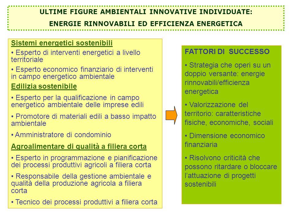 Sistemi energetici sostenibili Esperto di interventi energetici a livello territoriale Esperto economico finanziario di interventi in campo energetico