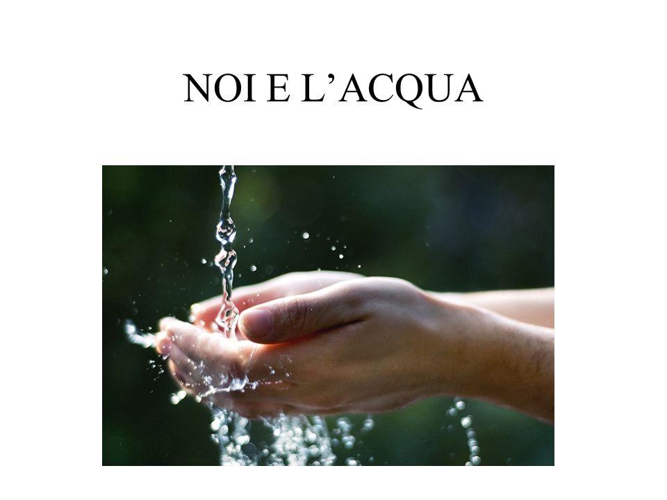 La percentuale dacqua nel corpo di un bambino è del 59% e quella di un adulto varia dal 45 al 65%.