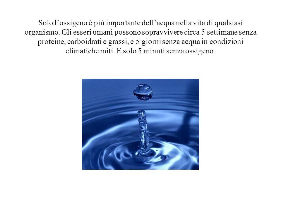 Solo lossigeno è più importante dellacqua nella vita di qualsiasi organismo. Gli esseri umani possono sopravvivere circa 5 settimane senza proteine, c