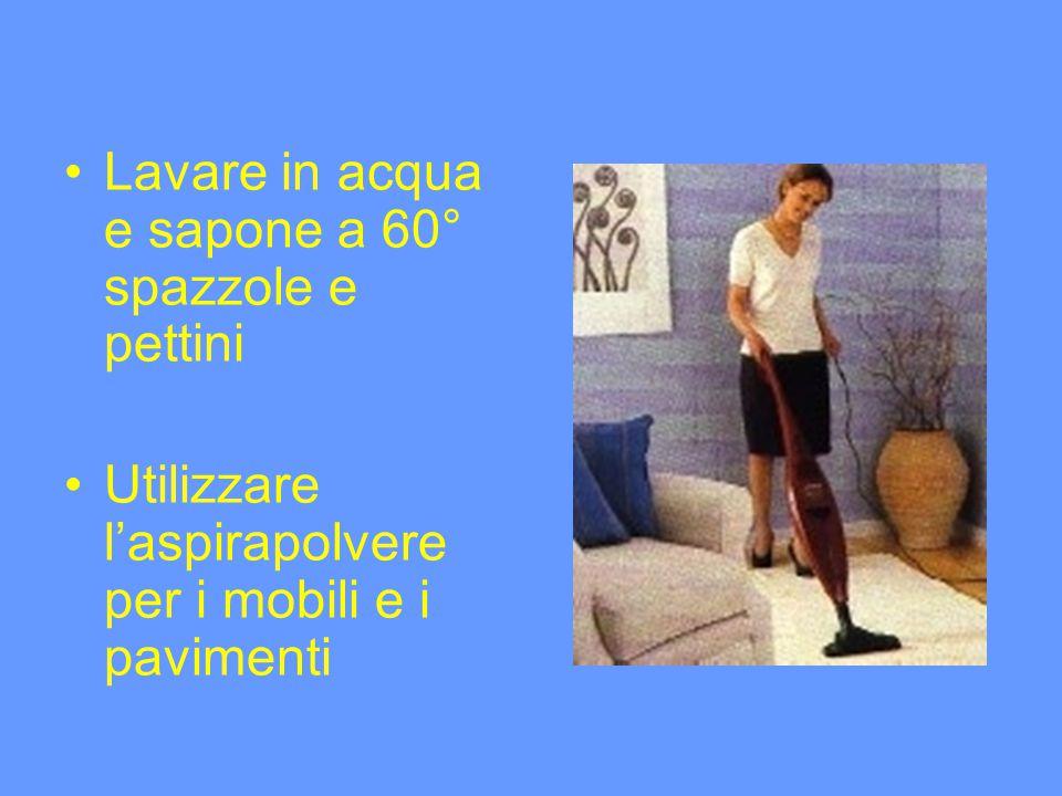 Lavare in acqua e sapone a 60° spazzole e pettini Utilizzare laspirapolvere per i mobili e i pavimenti