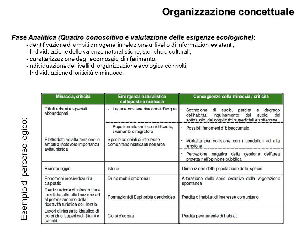 Fase Analitica (Quadro conoscitivo e valutazione delle esigenze ecologiche) Fase Analitica (Quadro conoscitivo e valutazione delle esigenze ecologiche) : -identificazione di ambiti omogenei in relazione al livello di informazioni esistenti, - Individuazione delle valenze naturalistiche, storiche e culturali, - caratterizzazione degli ecomosaici di riferimento; -Individuazione dei livelli di organizzazione ecologica coinvolti; - Individuazione di criticità e minacce.