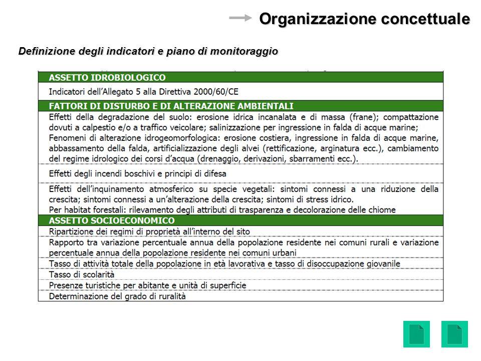 Definizione degli indicatori e piano di monitoraggio Organizzazione concettuale