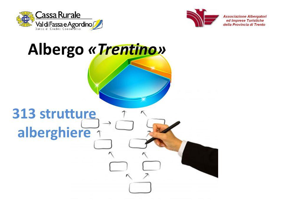 Albergo «Trentino» 313 strutture alberghiere