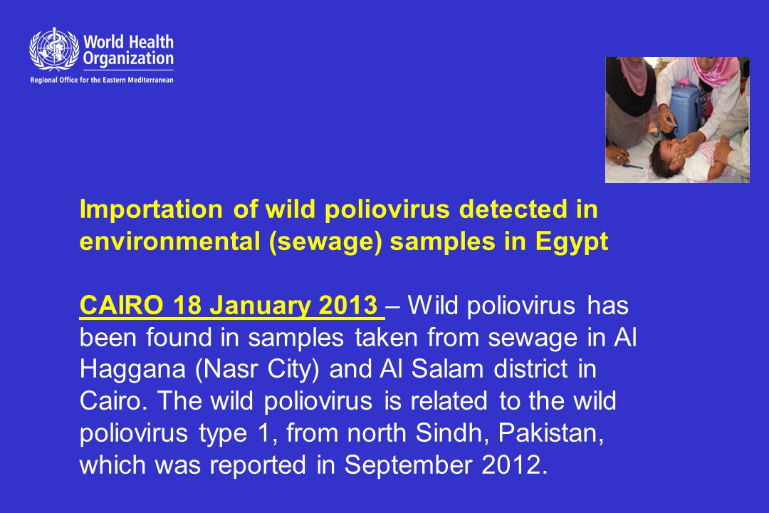 Updates on Egypt wild polio virus importation The first small scale polio campaign is planned to start on Sunday, 3 Feb 2013, in El Salam and Al Haggana areas.