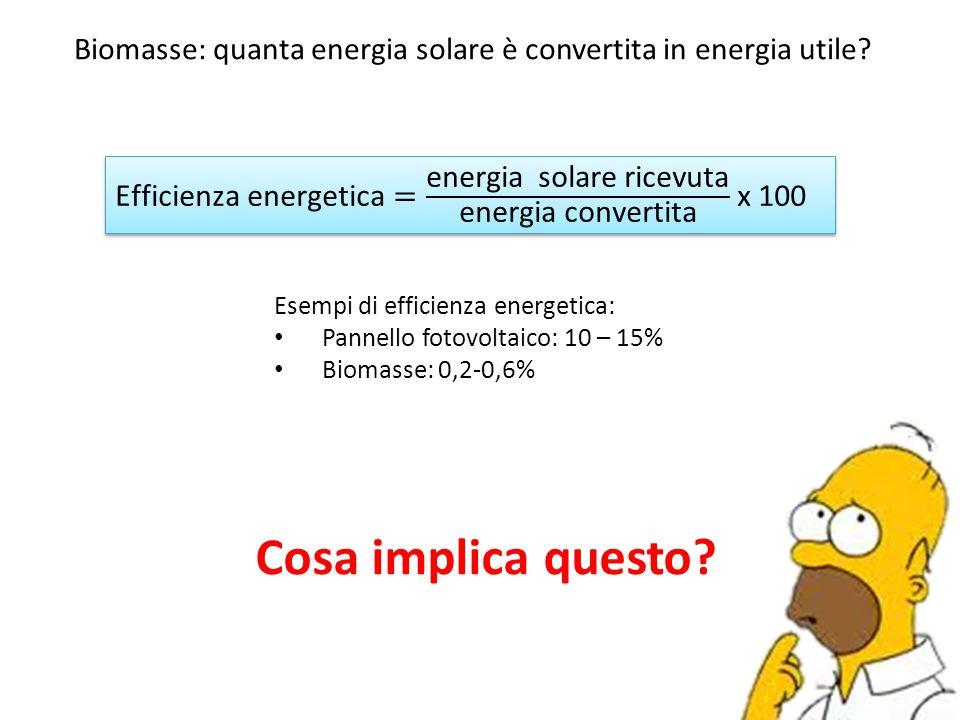 Biomasse: quanta energia solare è convertita in energia utile? Esempi di efficienza energetica: Pannello fotovoltaico: 10 – 15% Biomasse: 0,2-0,6% Cos