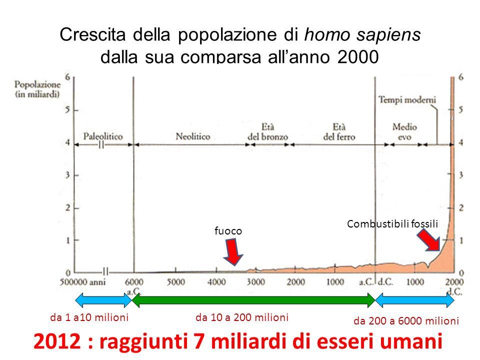 Crescita della popolazione di homo sapiens dalla sua comparsa allanno 2000 da 1 a10 milionida 10 a 200 milioni da 200 a 6000 milioni Combustibili foss