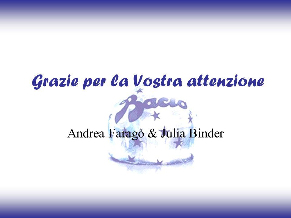 Grazie per la Vostra attenzione Andrea Faragò & Julia Binder