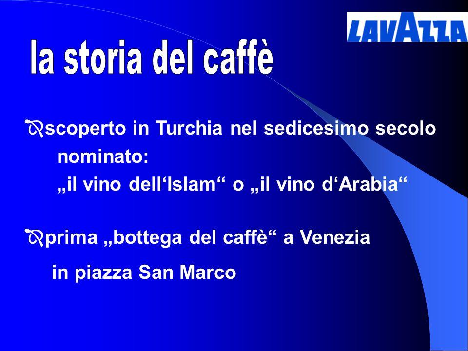 scoperto in Turchia nel sedicesimo secolo nominato: il vino dellIslam o il vino dArabia prima bottega del caffè a Venezia in piazza San Marco