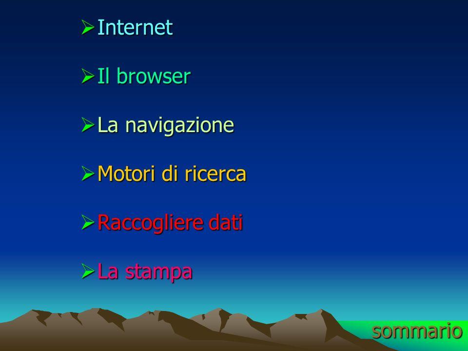 Internet Il browser La navigazione Motori di ricerca Raccogliere dati La stampa sommario