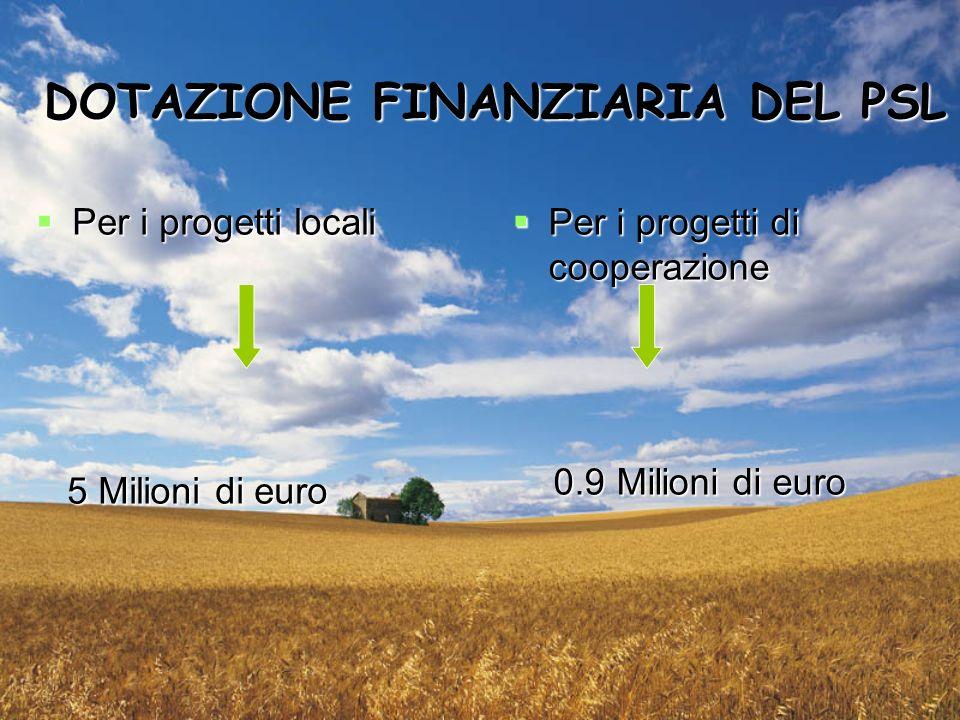 DOTAZIONE FINANZIARIA DEL PSL Per i progetti locali Per i progetti locali 5 Milioni di euro 5 Milioni di euro Per i progetti di cooperazione Per i progetti di cooperazione 0.9 Milioni di euro 0.9 Milioni di euro