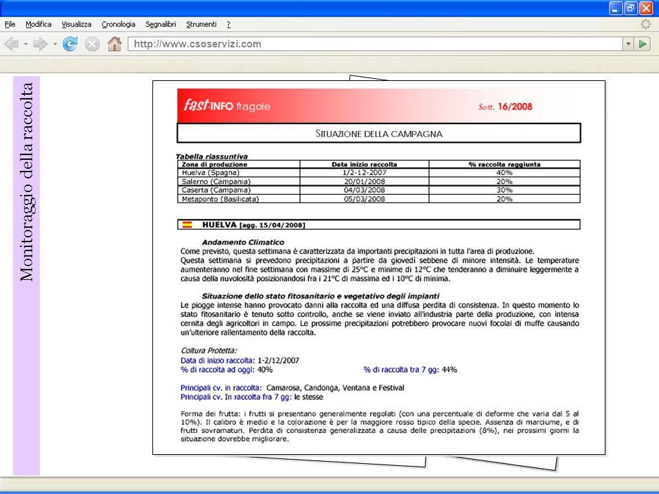 http://www.csoservizi.com Monitoraggio della raccolta
