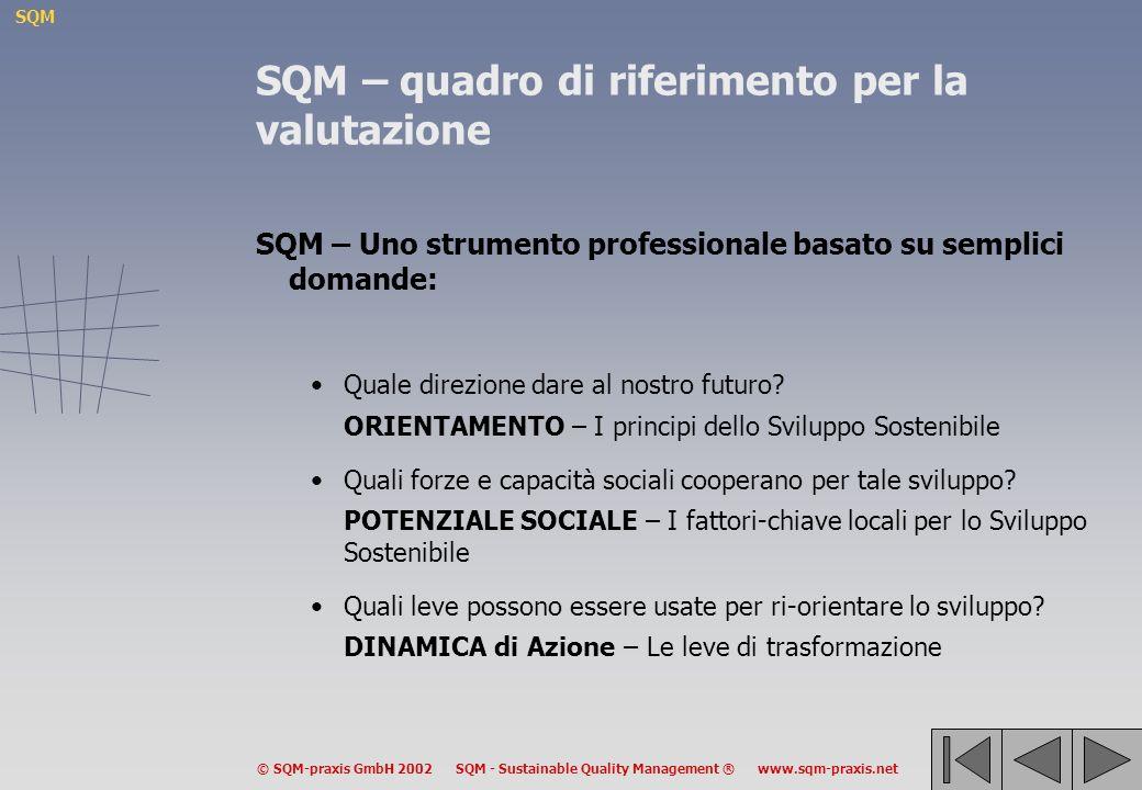 SQM © SQM-praxis GmbH 2002 SQM - Sustainable Quality Management ® www.sqm-praxis.net SQM – quadro di riferimento per la valutazione SQM – Uno strumento professionale basato su semplici domande: Quale direzione dare al nostro futuro.