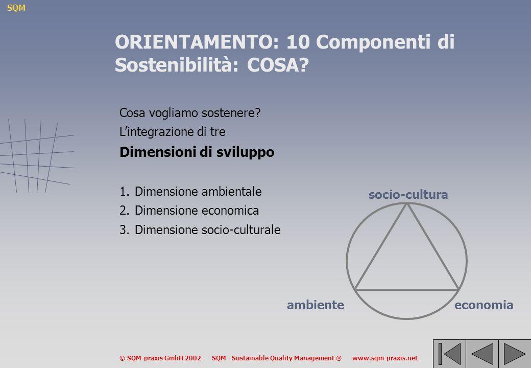 SQM © SQM-praxis GmbH 2002 SQM - Sustainable Quality Management ® www.sqm-praxis.net Cosa vogliamo sostenere? Lintegrazione di tre Dimensioni di svilu