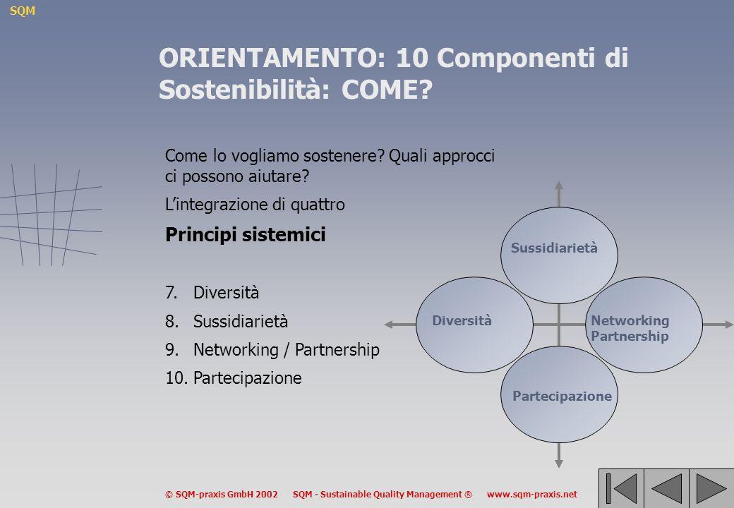 SQM © SQM-praxis GmbH 2002 SQM - Sustainable Quality Management ® www.sqm-praxis.net Come lo vogliamo sostenere? Quali approcci ci possono aiutare? Li