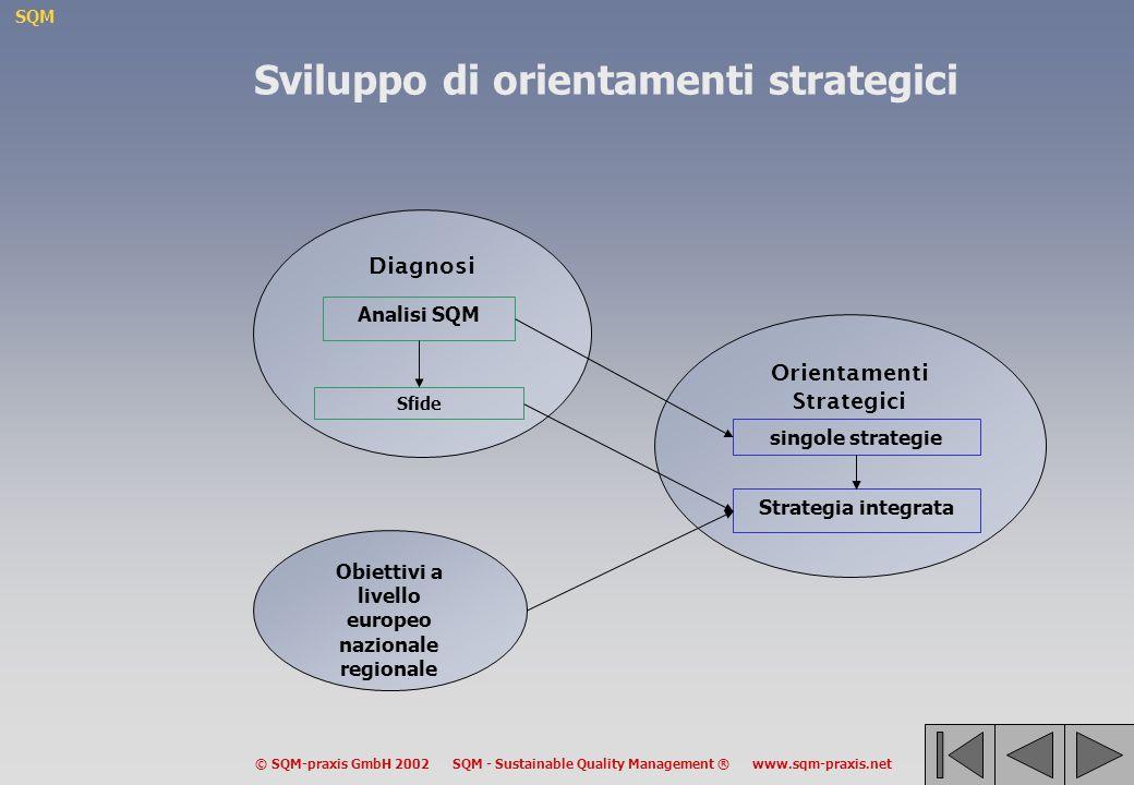 SQM © SQM-praxis GmbH 2002 SQM - Sustainable Quality Management ® www.sqm-praxis.net Orientamenti Strategici Diagnosi Obiettivi a livello europeo nazionale regionale Analisi SQM Sfide singole strategie Strategia integrata Sviluppo di orientamenti strategici