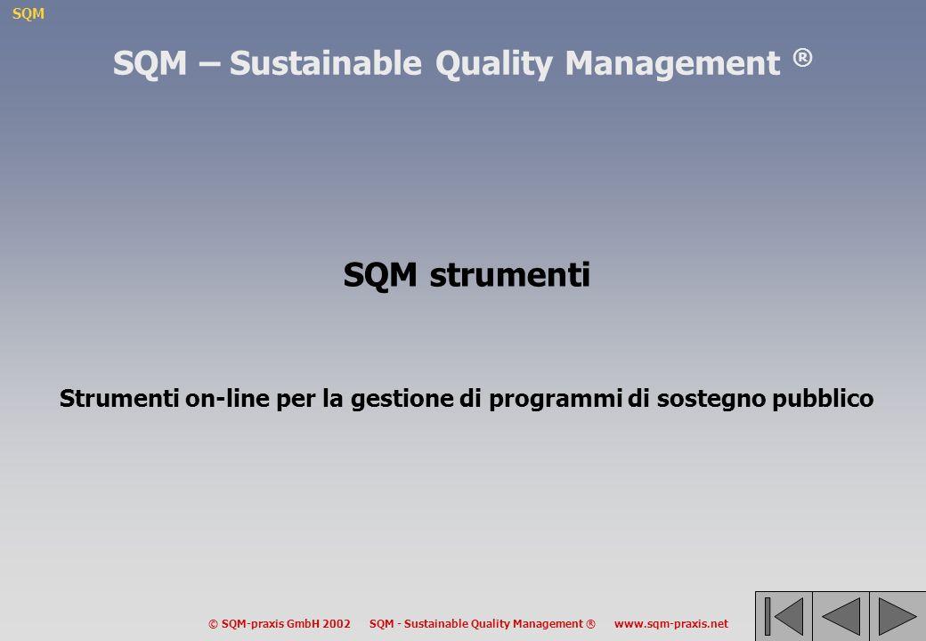 SQM © SQM-praxis GmbH 2002 SQM - Sustainable Quality Management ® www.sqm-praxis.net SQM – Sustainable Quality Management ® SQM strumenti Strumenti on