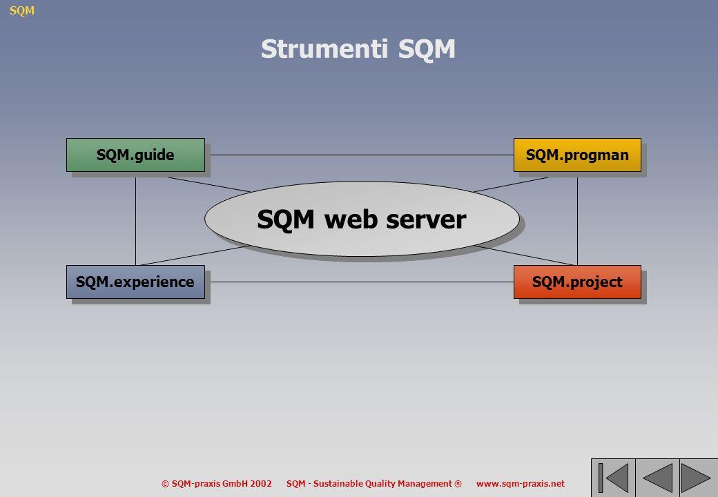 SQM © SQM-praxis GmbH 2002 SQM - Sustainable Quality Management ® www.sqm-praxis.net Strumenti SQM SQM web server SQM.progman SQM.guide SQM.experience