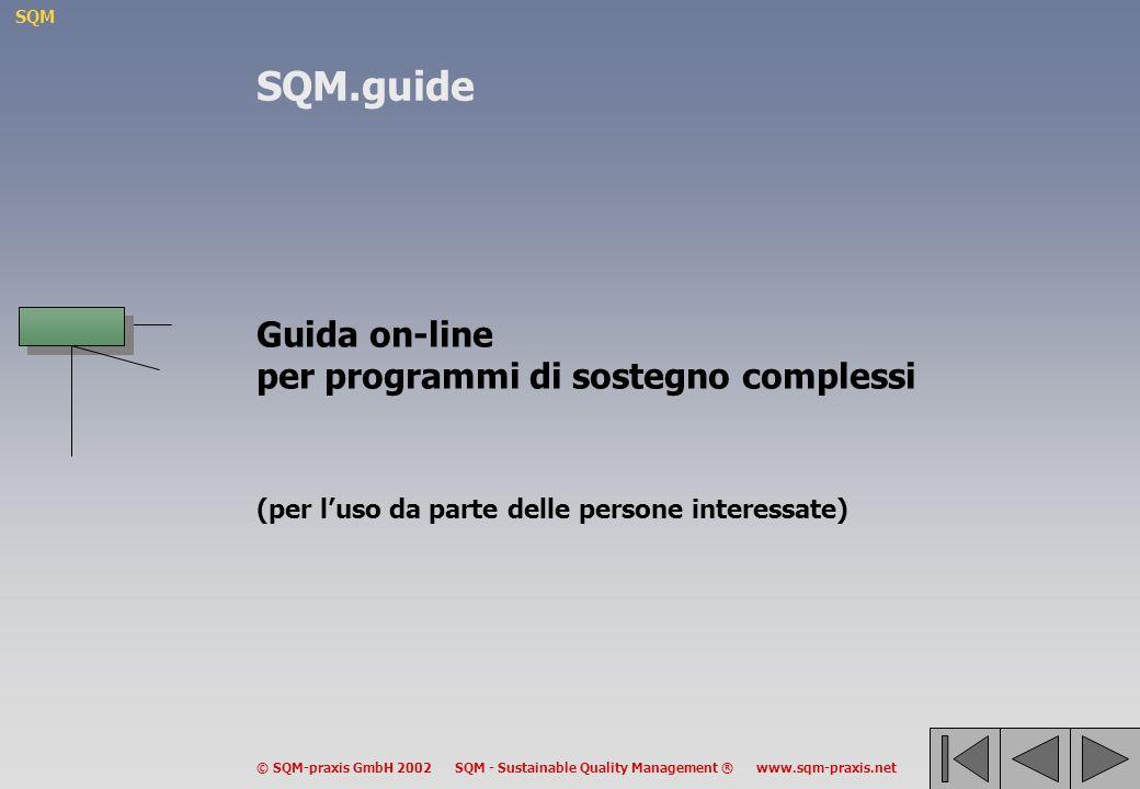 SQM © SQM-praxis GmbH 2002 SQM - Sustainable Quality Management ® www.sqm-praxis.net Guida on-line per programmi di sostegno complessi (per luso da parte delle persone interessate) SQM.guide