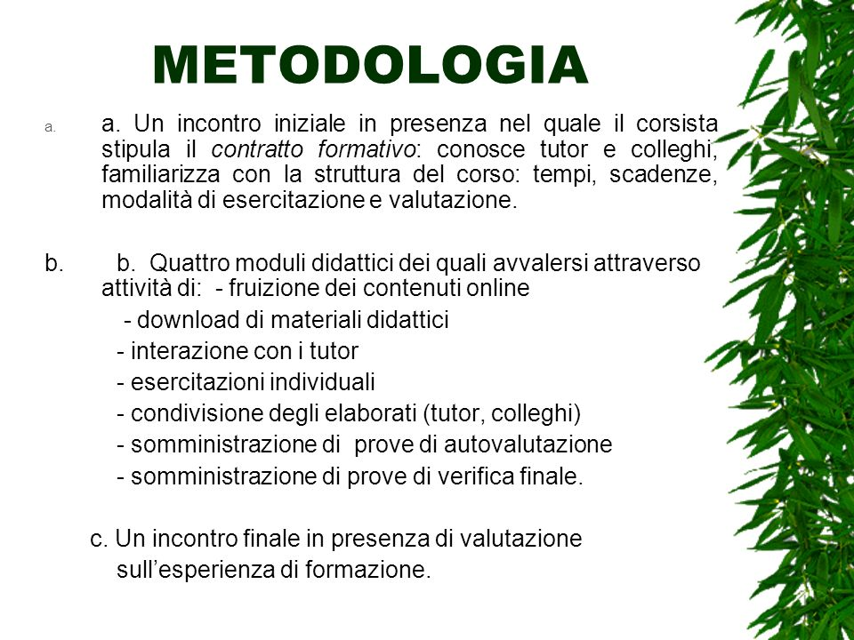 METODOLOGIA a. a.