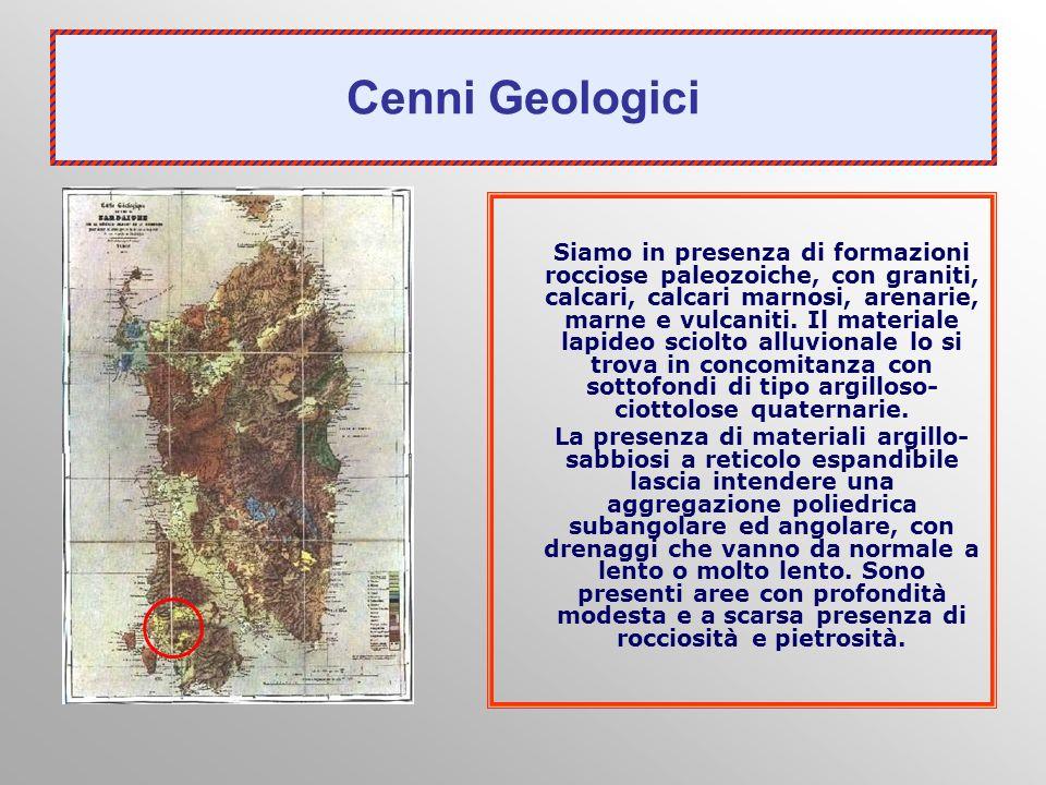 Cenni Geologici Siamo in presenza di formazioni rocciose paleozoiche, con graniti, calcari, calcari marnosi, arenarie, marne e vulcaniti. Il materiale