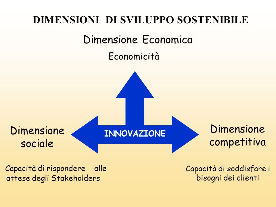 Capacità di soddisfare i bisogni dei clienti Capacità di rispondere alle attese degli Stakeholders INNOVAZIONE Dimensione Economica Dimensione competi