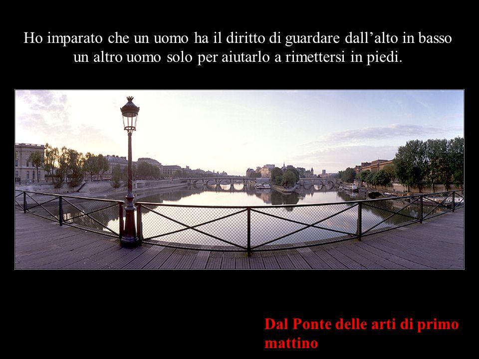 LIstituto di Francia & il Ponte Nuovo dal Ponte delle Arti Ho imparato che quando un neonato stringe per la prima volta il dito di suo padre nel pugno, lo ha catturato per sempre.