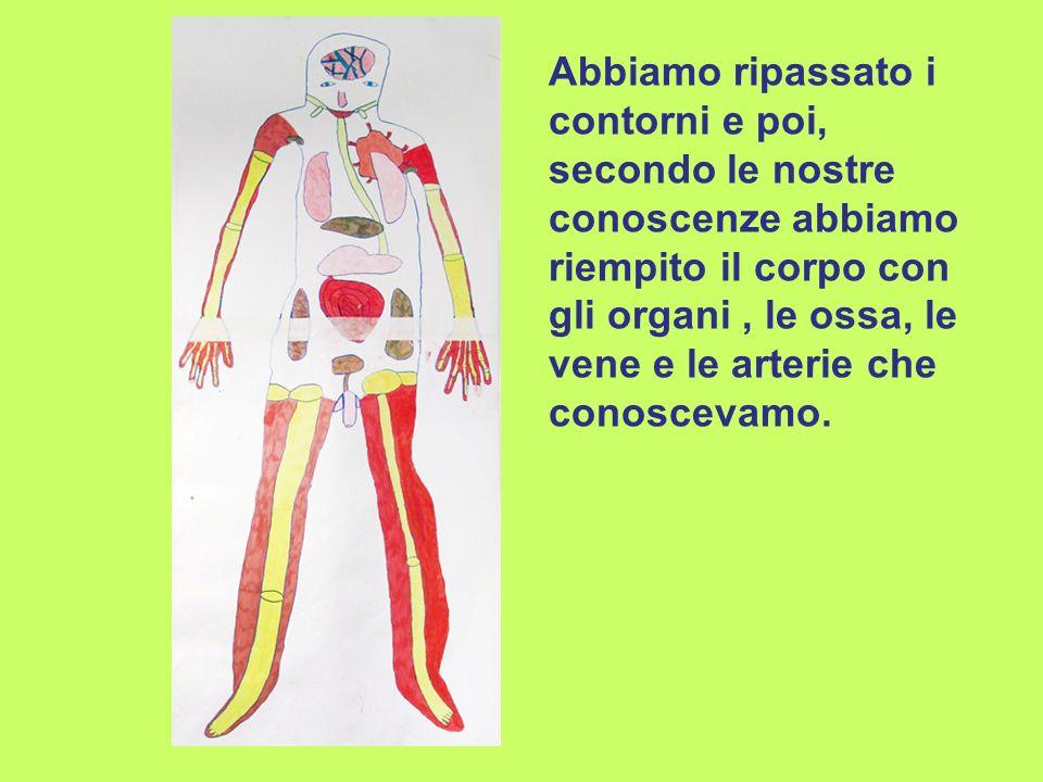 Abbiamo ripassato i contorni e poi, secondo le nostre conoscenze abbiamo riempito il corpo con gli organi, le ossa, le vene e le arterie che conoscevamo.