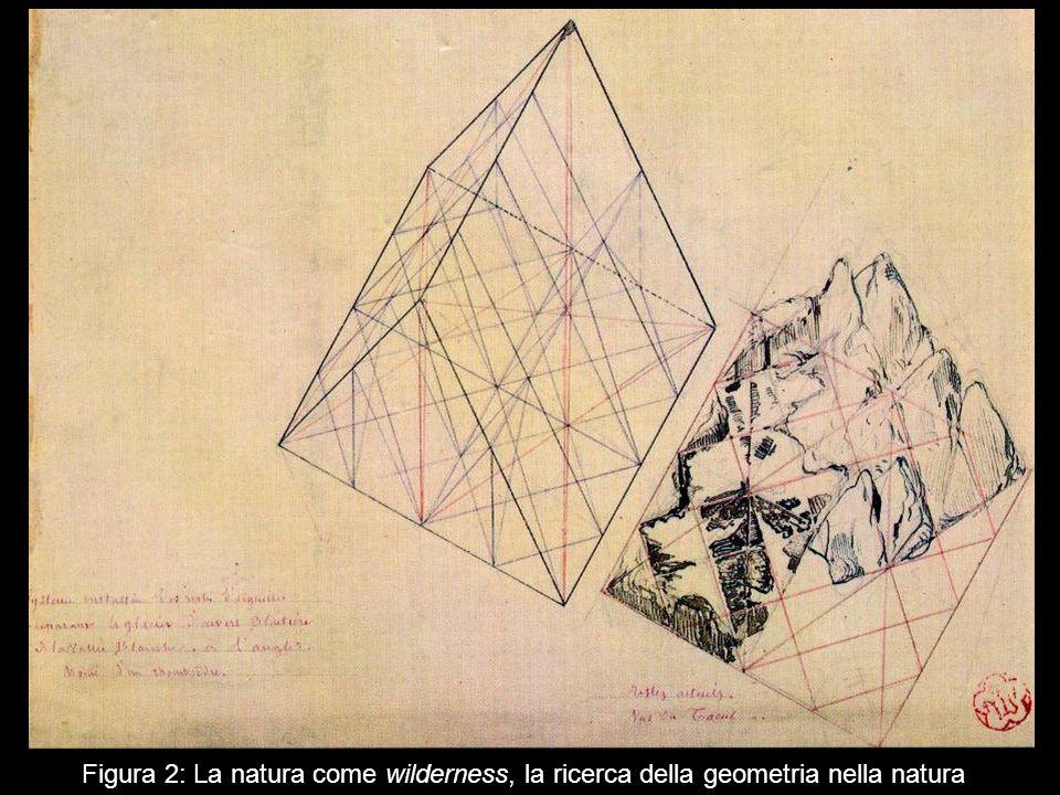 Figura 2: La natura come wilderness, la ricerca della geometria nella natura