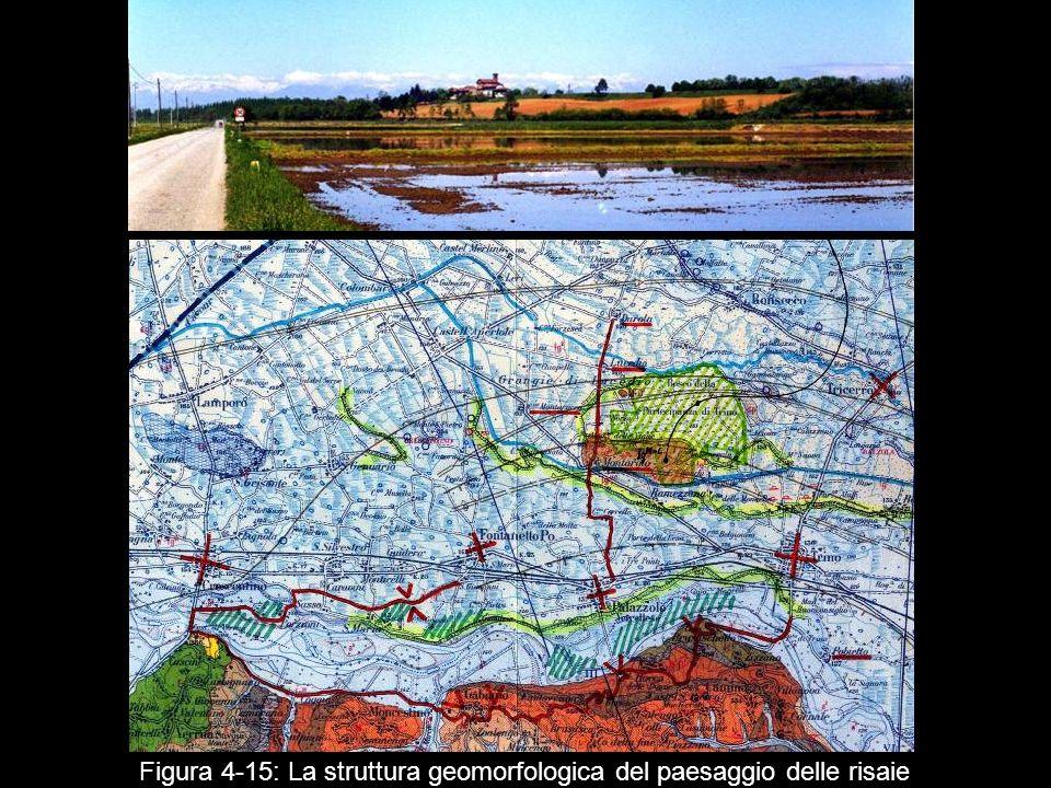 Figura 4 15: La struttura geomorfologica del paesaggio delle risaie