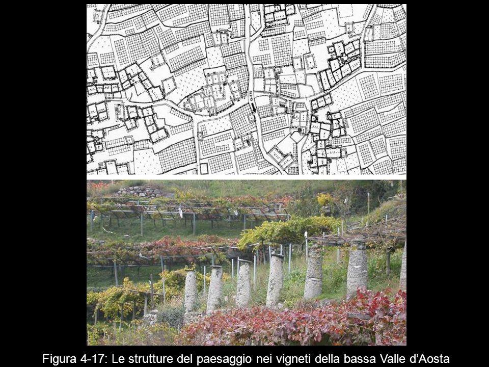 Figura 4 17: Le strutture del paesaggio nei vigneti della bassa Valle dAosta