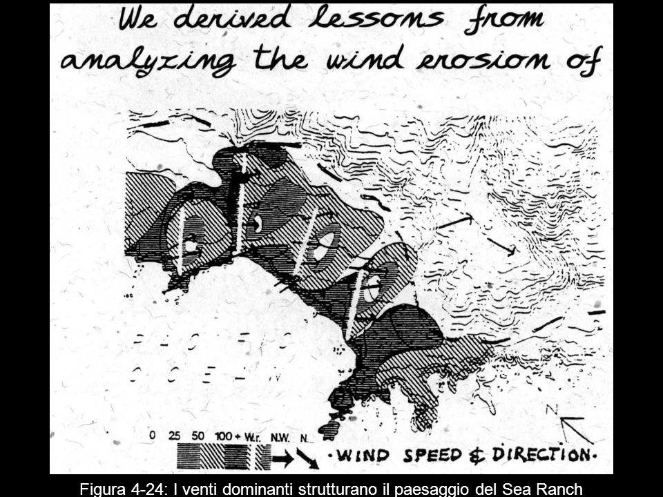 Figura 4 24: I venti dominanti strutturano il paesaggio del Sea Ranch
