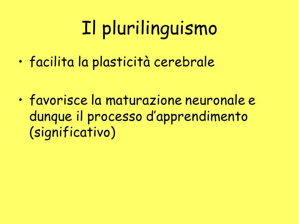 Il plurilinguismo facilita la plasticità cerebrale favorisce la maturazione neuronale e dunque il processo dapprendimento (significativo)