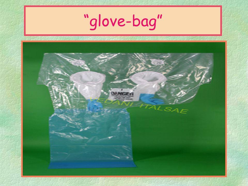 glove-bag §Per glove bag si intende: §(* Letteralmente,