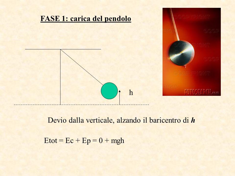 h FASE 1: carica del pendolo Devio dalla verticale, alzando il baricentro di h Etot = Ec + Ep = 0 + mgh