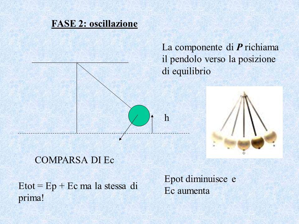 FASE 2: oscillazione h La componente di P richiama il pendolo verso la posizione di equilibrio COMPARSA DI Ec Etot = Ep + Ec ma la stessa di prima! Ep