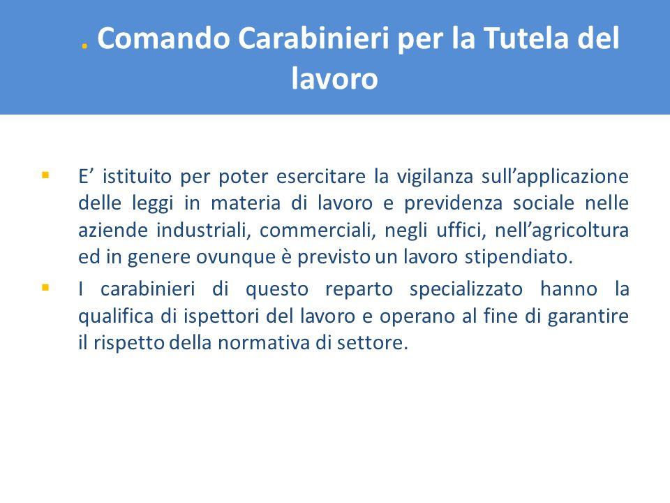 . Comando Carabinieri per la Tutela del lavoro E istituito per poter esercitare la vigilanza sullapplicazione delle leggi in materia di lavoro e previ