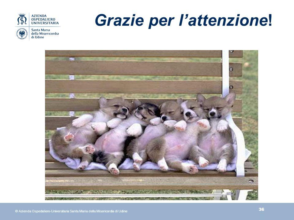 36 © Azienda Ospedaliero-Universitaria Santa Maria della Misericordia di Udine Grazie per lattenzione!