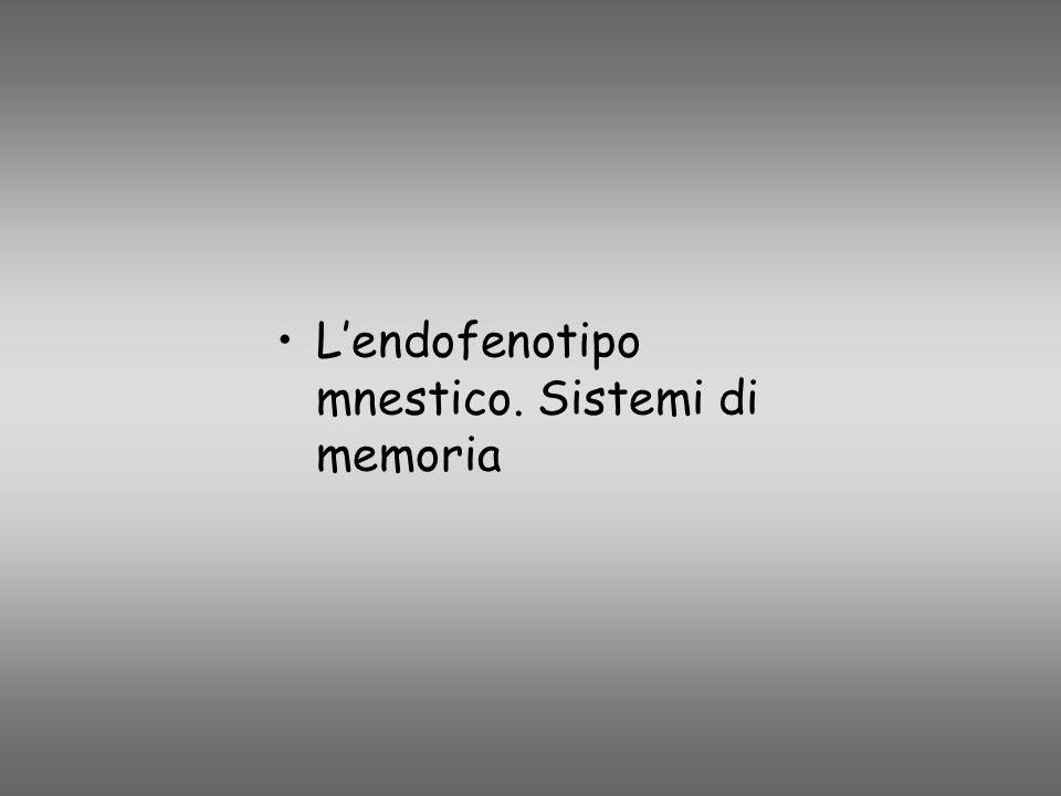 Lendofenotipo mnestico. Sistemi di memoria