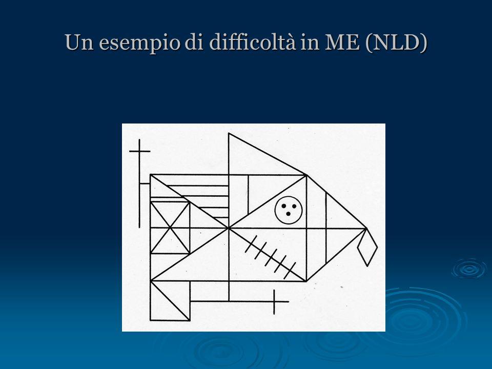 Un esempio di difficoltà in ME (NLD)