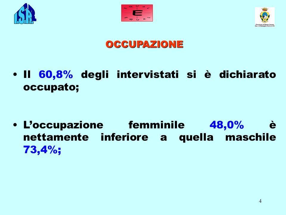 4 OCCUPAZIONE Il 60,8% degli intervistati si è dichiarato occupato; Loccupazione femminile 48,0% è nettamente inferiore a quella maschile 73,4%;