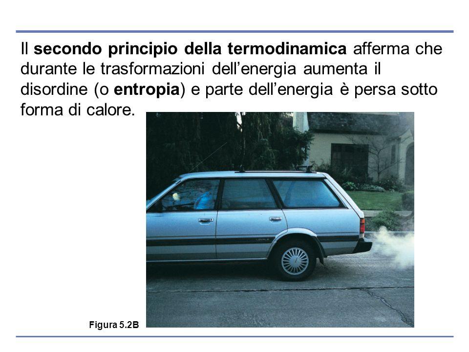 Il secondo principio della termodinamica afferma che durante le trasformazioni dellenergia aumenta il disordine (o entropia) e parte dellenergia è per