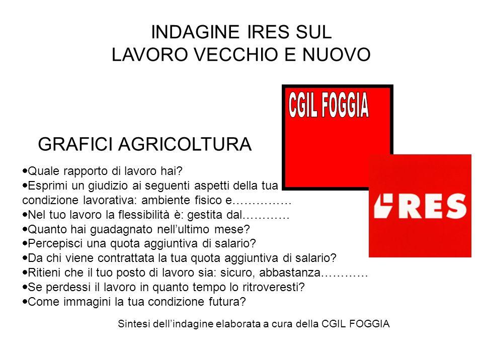 INDAGINE IRES SUL LAVORO VECCHIO E NUOVO GRAFICI AGRICOLTURA Quale rapporto di lavoro hai.