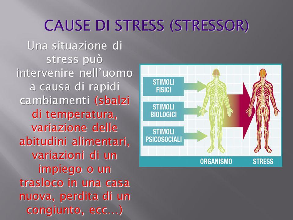 Una situazione di stress può intervenire nelluomo a causa di rapidi cambiamenti (sbalzi di temperatura, variazione delle abitudini alimentari, variazi