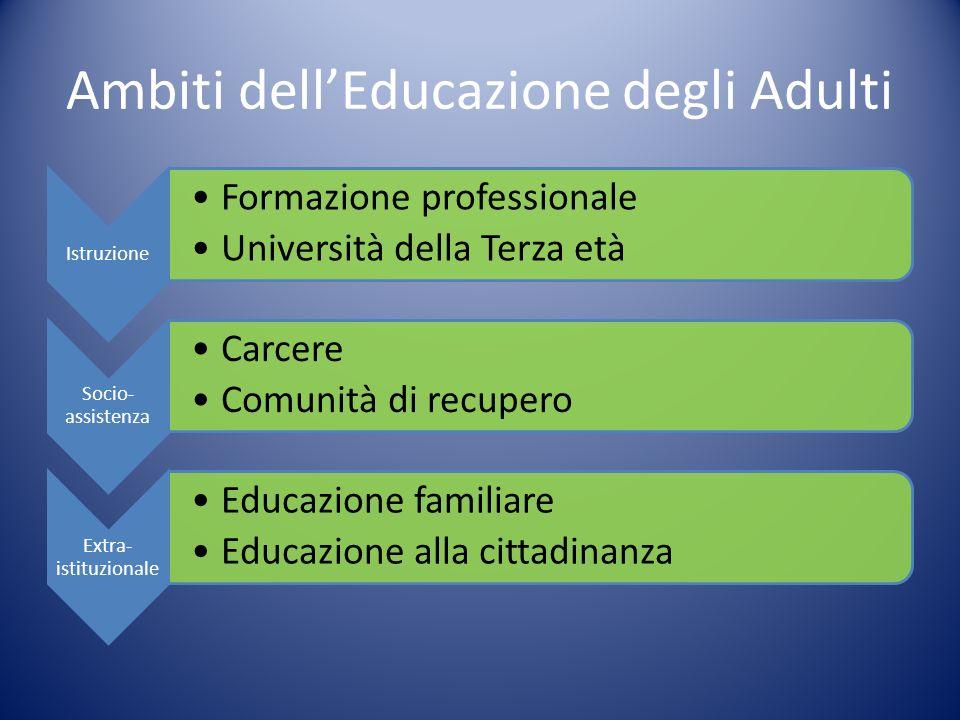 Ambiti dellEducazione degli Adulti Istruzione Formazione professionale Università della Terza età Socio- assistenza Carcere Comunità di recupero Extra