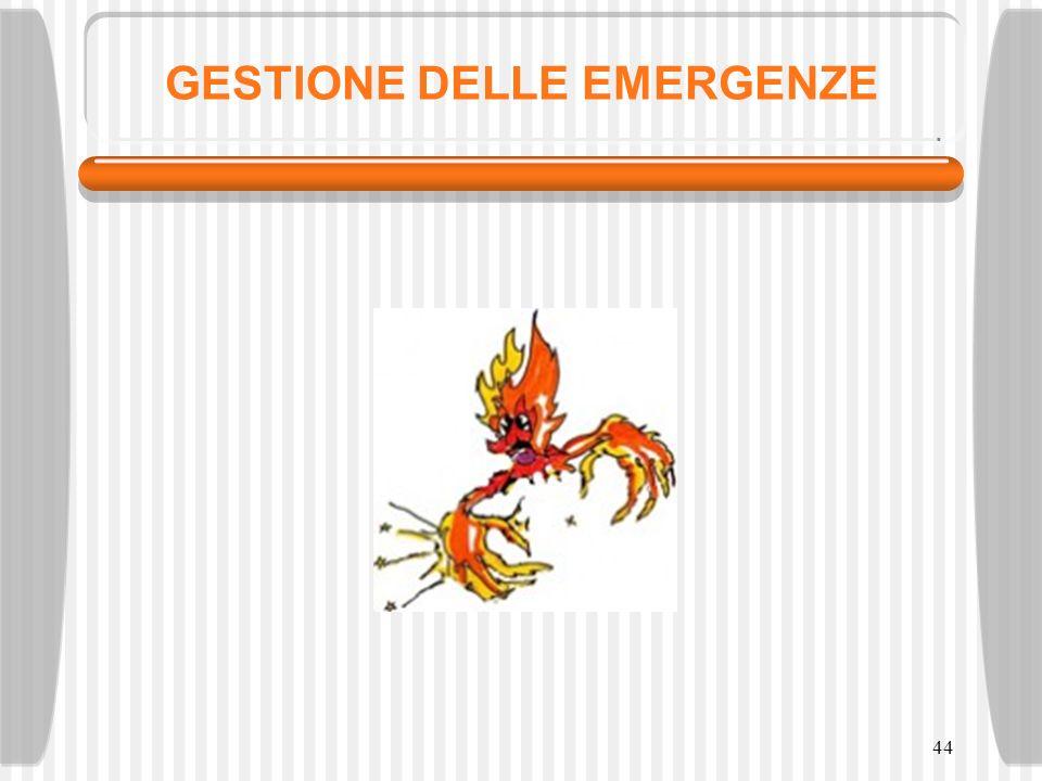 GESTIONE DELLE EMERGENZE 44