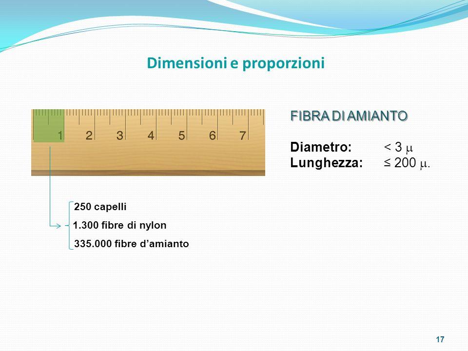 250 capelli 1.300 fibre di nylon 335.000 fibre damianto FIBRA DI AMIANTO Diametro: < 3 Lunghezza: 200. Dimensioni e proporzioni 17