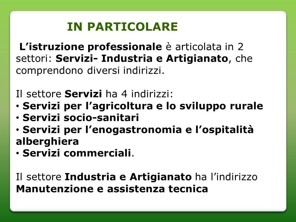 Listruzione professionale è articolata in 2 settori: Servizi- Industria e Artigianato, che comprendono diversi indirizzi.